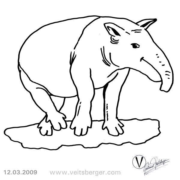 tapir coloring pages for kids - photo#18